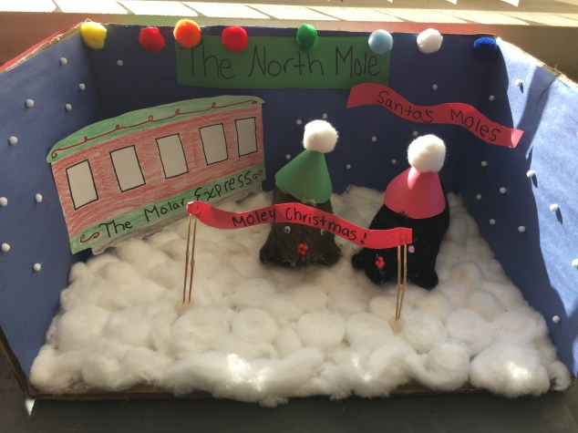 Mole Project Winner! Chem students celebrate Avogadro's number with a fun mole project.